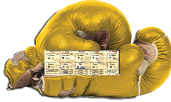 Chinese astrology news -0 golden gloves